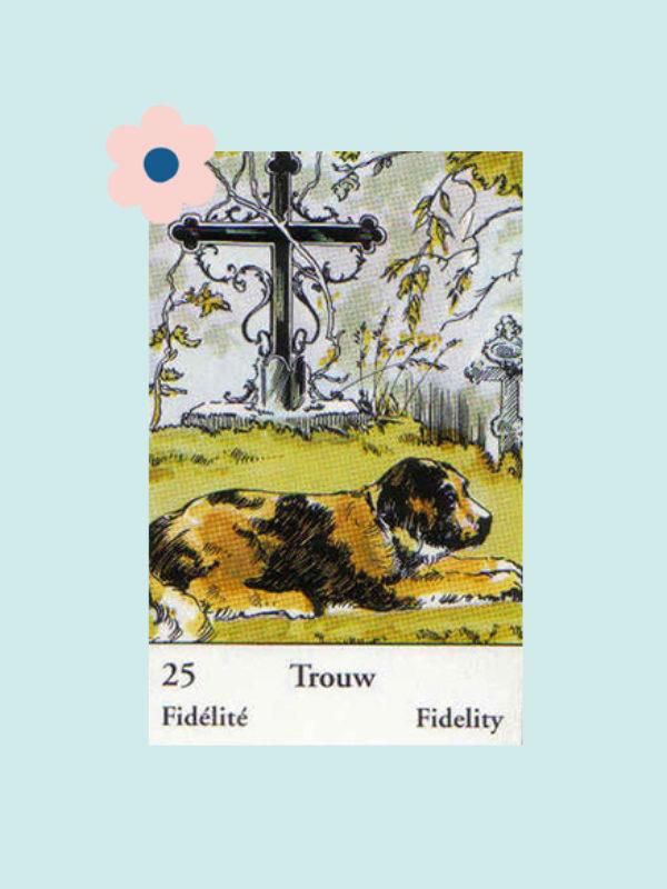 Kaart 25: De Hond