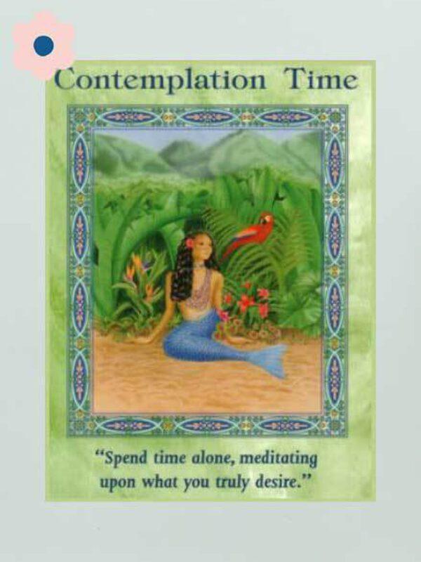 Contemplatie en meditatie