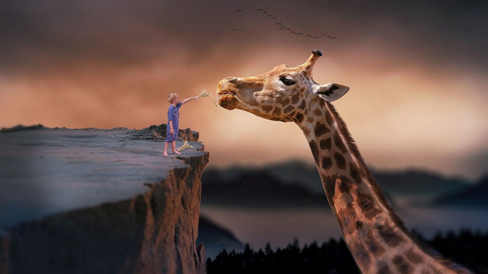 DEEL 1 / Het verband én het verschil tussen dromen en psychosen