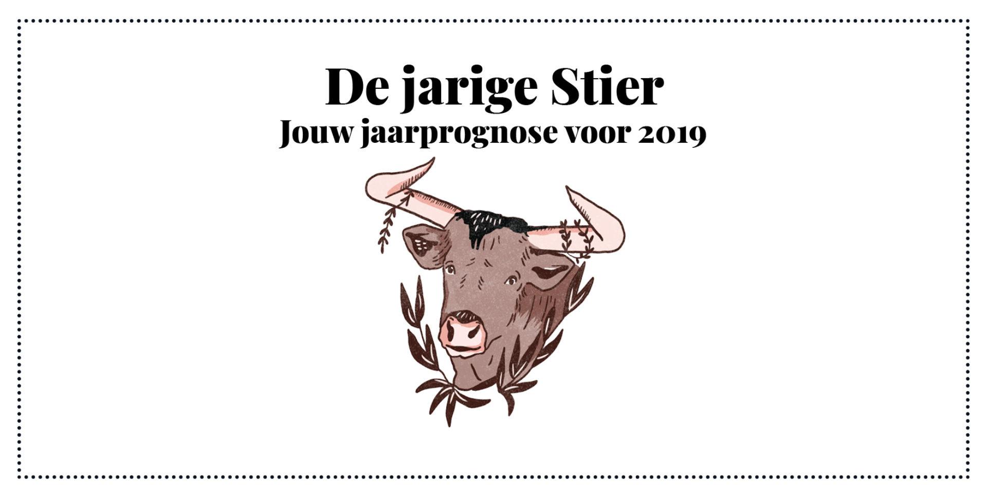 Stier, jouw jaarhoroscoop 2019-2020