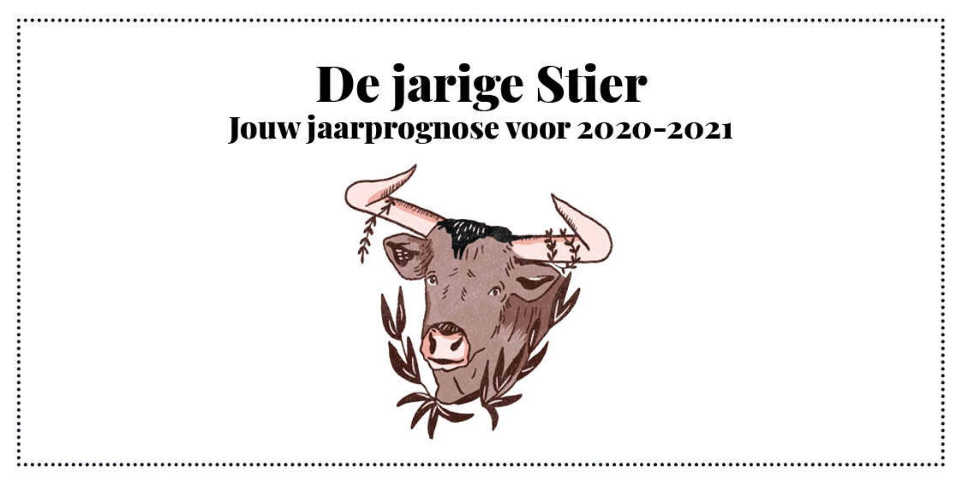 Stier, jouw jaarhoroscoop 2020-2021