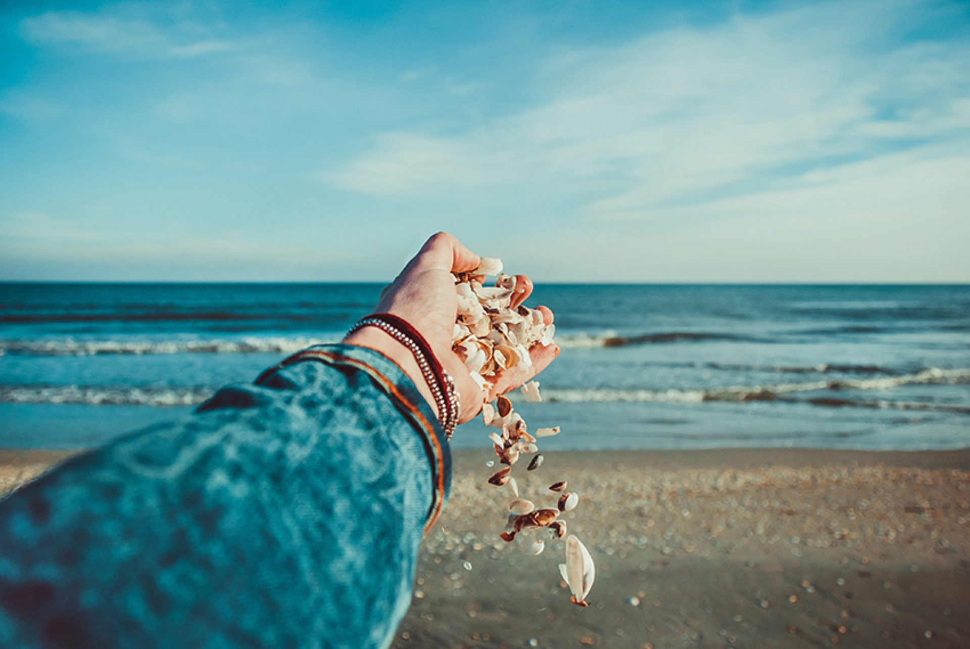 Kaurileggingen: schelpen die inzicht geven