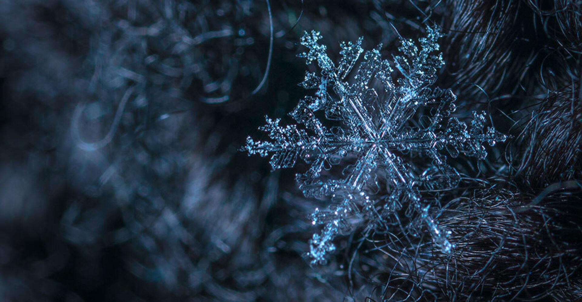 Midwinter (21 december) - De kortste dag, de langste nacht