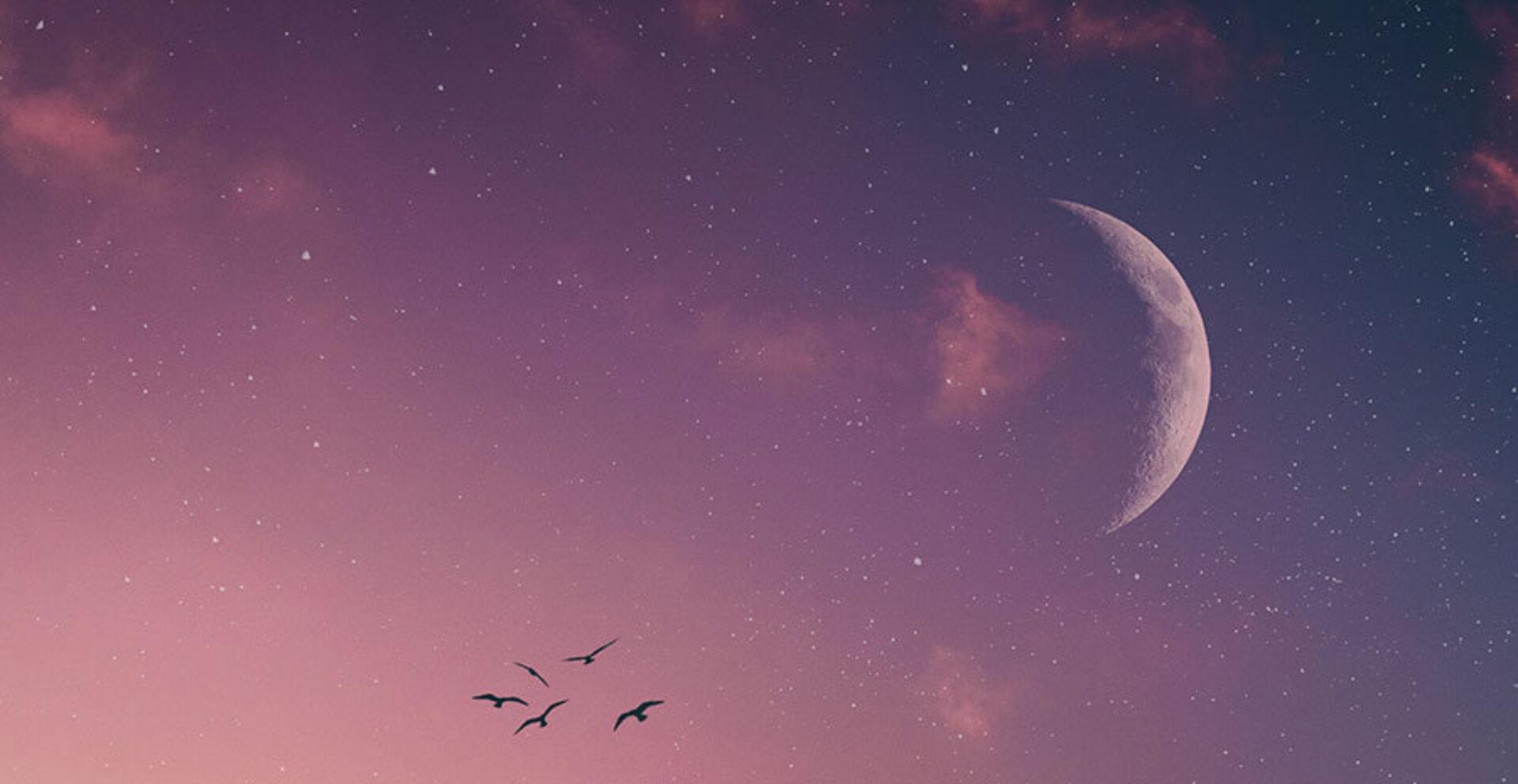 VIDEO: Nieuwe Maan in Weegschaal 16 oktober 2020