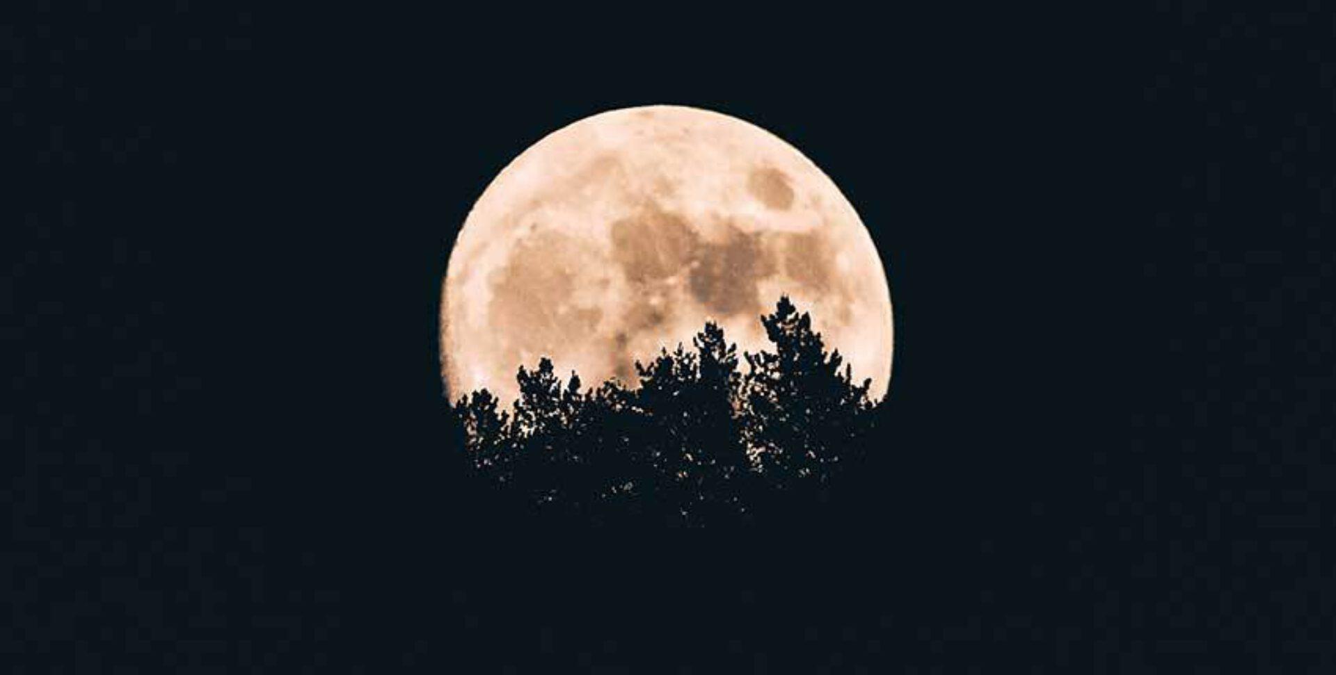 Het pad van de maan – hoe gaat een moderne heks om met deze onzekere tijden?
