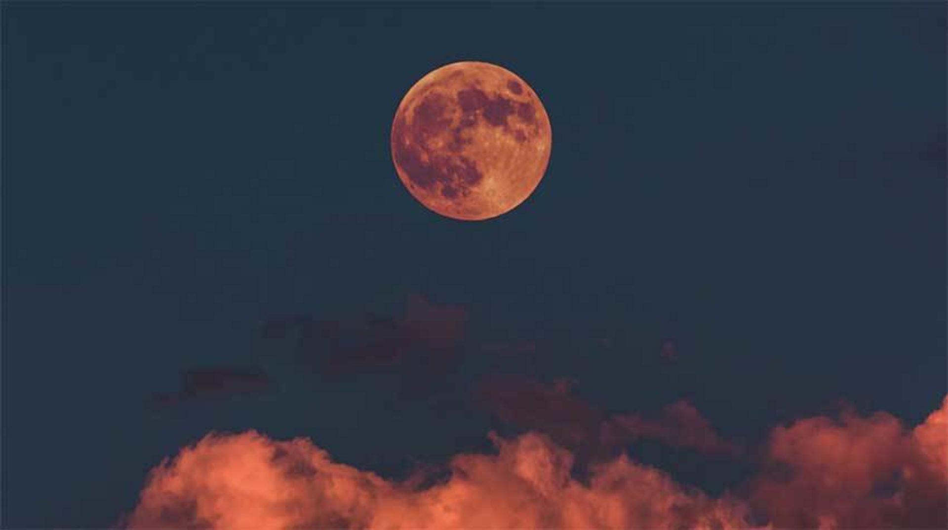 Wicca & de Maan