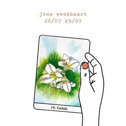 Weekkaart 26/07/2021 - 29/07/2021
