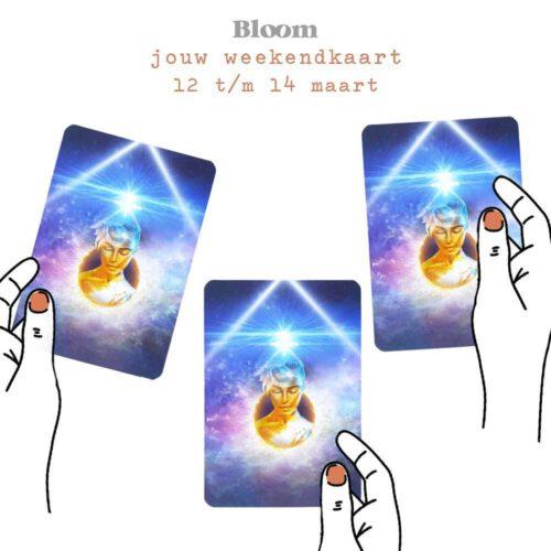 Weekendkaart 12/03/2021 - 14/03/2021