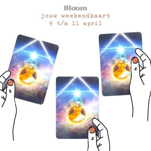 Weekendkaart 9/04/2021 - 11/04/2021