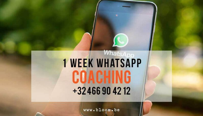 1 week nummer Bloom Whats App Chat