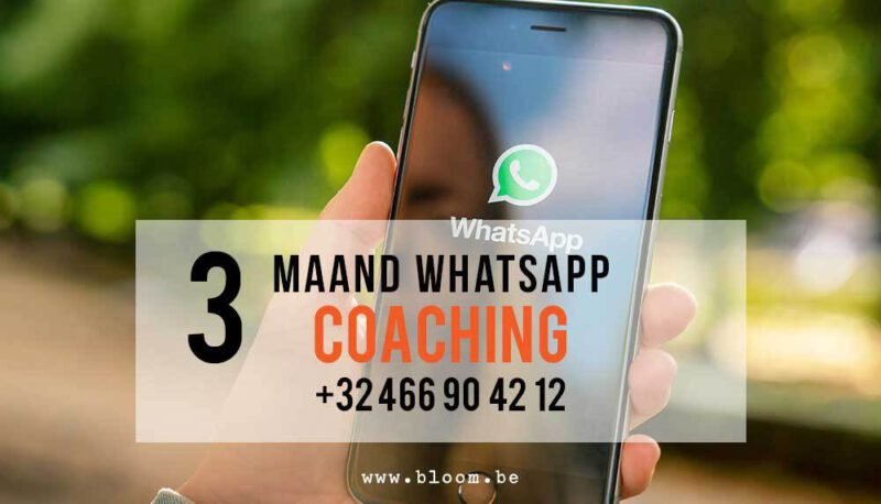 3 maand nummer Bloom Whats App Chat