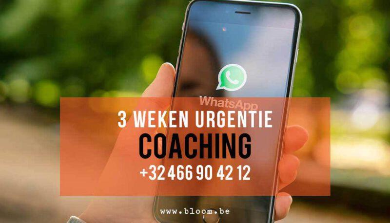 3 weken urgentie nummer Bloom Whats App Chat