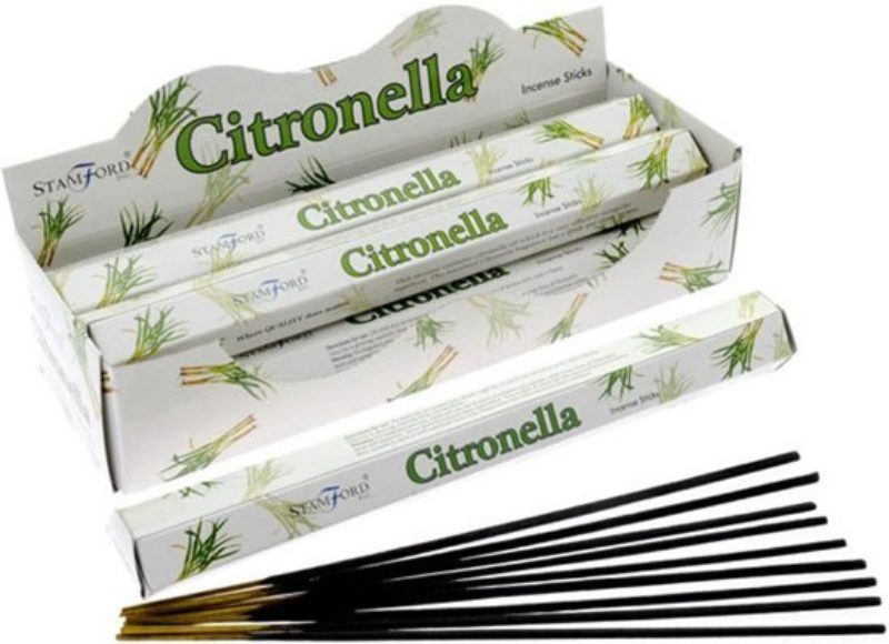 Citronella Wierook Voordeelpak Stamford Bloom Web