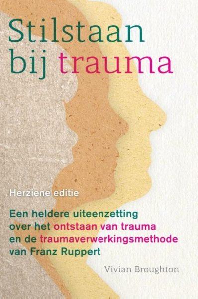 Stilstaan Bij Trauma Vivian Broughton 9789463160490 Bloom Web