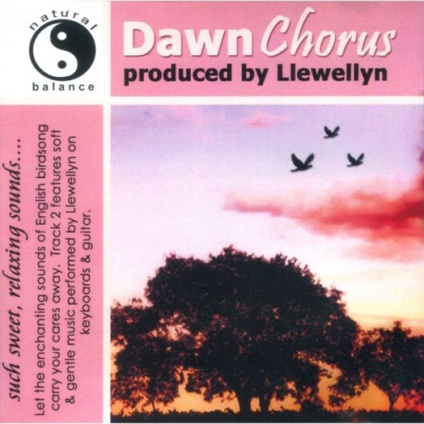 Dawn Chorus Llewellyn CD Muziek Bloom web