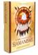 De Helende Kracht Van Het Sjamanisme 9789044751475 Bloom Web