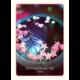 De Wijsheid Van De Oude Orakels 9789044747652 Kaart Hydromantie Bloom Web