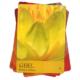 Geheimtaal Van Kleuren Inna Segal Bloom 9789085081722 Kaart Geel
