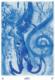 Hemelpoorten Orakelkaarten Madama 9789085080428 kaart offer Bloom