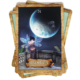 Magische Wegwijzers Orakelkaarten Colette Baron Reid 9789085081906 Kaart Maanlicht Bloom Web